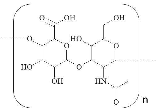 Hyaluron, hyaluronic acid, analysis of, Kapillarelektrophorese, CE, capillary electrophoresis