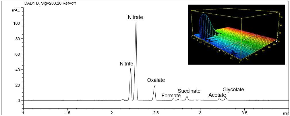 CE, organic acids, nitrite, nitrate, formate, oxalate, succinate